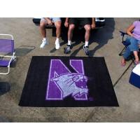Northwestern University Tailgater Rug