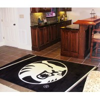 Cal State - Chico 4 x 6 Rug