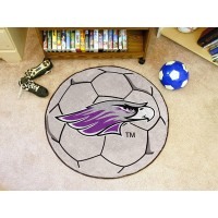 University Of Wisconsin-Whitewater Soccer Ball Rug