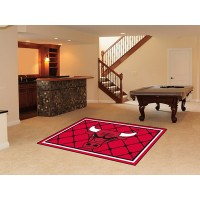 NBA - Chicago Bulls  5 x 8 Rug