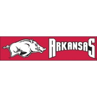BARK Arkansas Giant 8-Foot X 2-Foot Nylon Banner