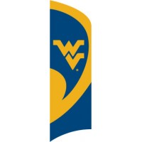 TTWV West Virginia Tall Team Flag with pole