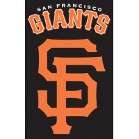 AFSFG Giants 44x28 Applique Banner