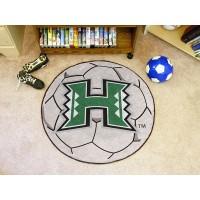 University of Hawaii Soccer Ball Rug