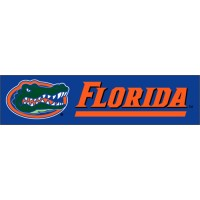 BUF Florida Giant 8-Foot X 2-Foot Nylon Banner