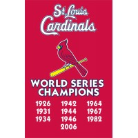 AFSCC Cardinals Championships 44x28 Applique Banner