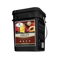 Wise Foods Gluten Free Freeze Dried Fruit - 152 Serving