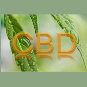 CBD Products (23)